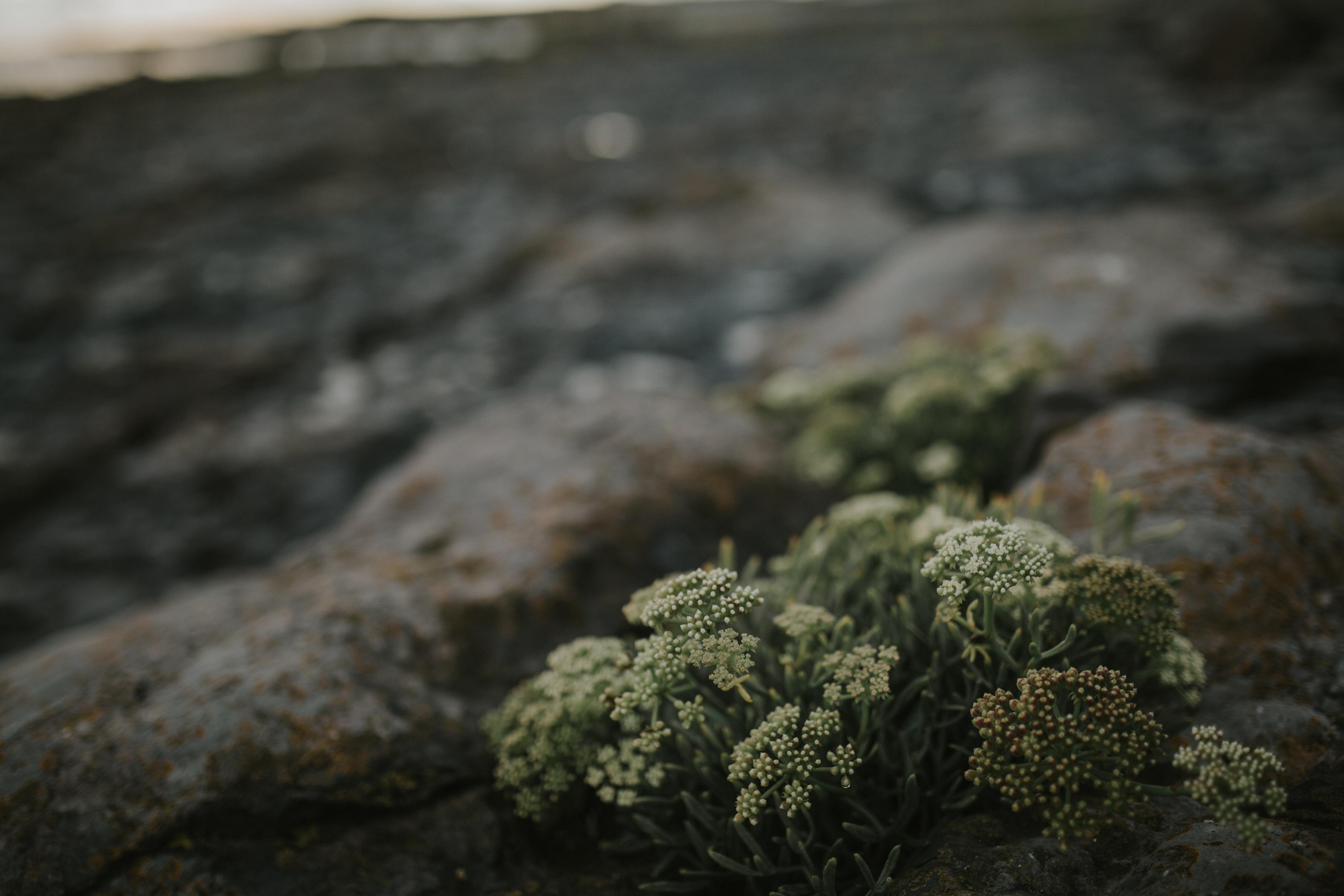 Luka-Russ-Porthcawl-Beach-Engagement-4