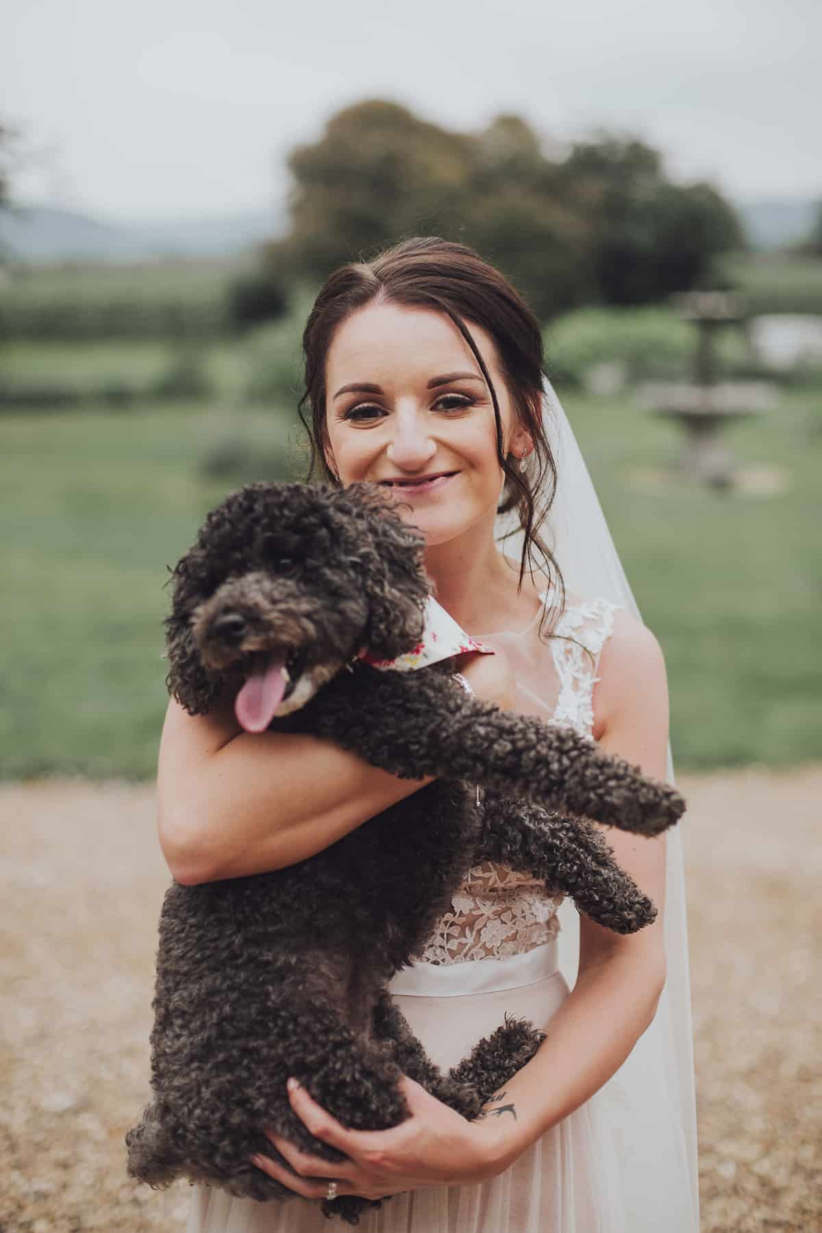 dogs and couple at Glewstone court country house wedding photograph