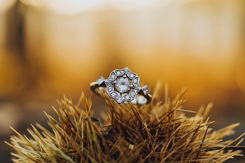 engagement ring in forest
