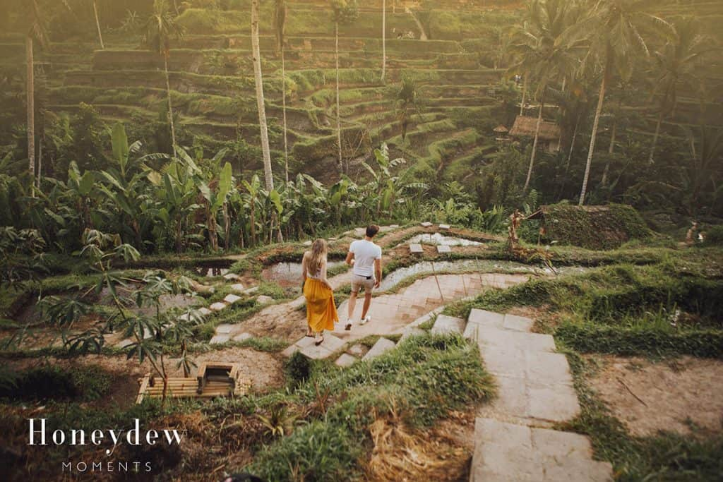 a couple walking through Tegalalang Rice Terraces